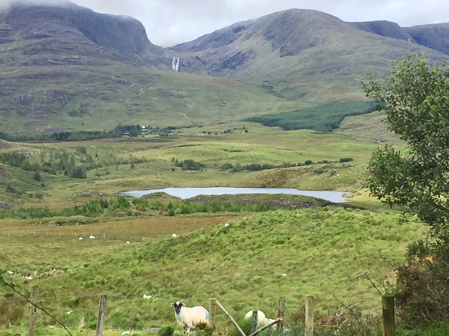 View of Dromtine Lake and Kerry GeoPark
