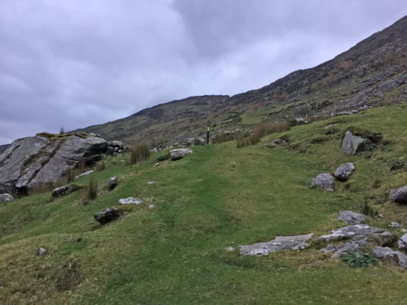 The grassy Lack Road part of The Kerry Way
