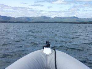 Kenmare Bay Boat Trip from Iveragh to Beara Peninsula