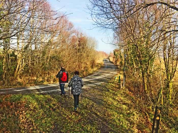 Lomanagh Trail Walkers Sneem