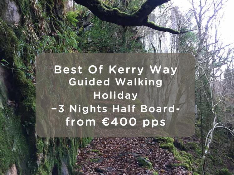 Kerry Way Walking Holiday Offer